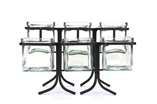Mind Reader 6 Compartment Condiment Server Stand, Garnish Station for Restaurant, Bars, Removable Jars, Black, 9.5' W x 7.25' H, Clear 2 Tier