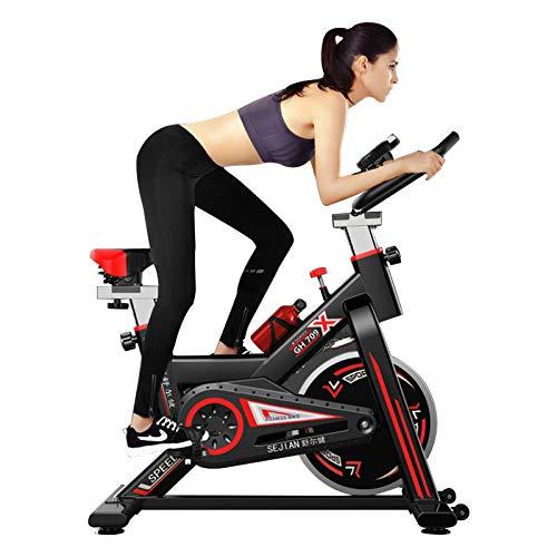 DGDC Bicicleta Estáticas para Fitness, Bici de Spinning,con