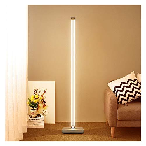 WLKDMJ Vloerlamp, voor de woonkamer moderne Staande Lamp Lezen Lamp Torchiere Licht Tall Staande Paal Licht Nachtkastje lamp Hue Smart vloerlamp 40W