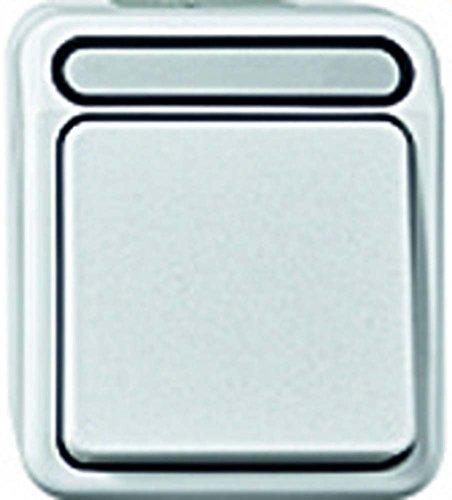 Merten MEG3115-8019 Serienschalter, 1-polig, polarweiß, AQUASTAR
