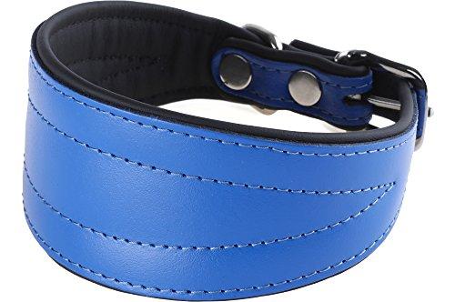 Garronda Collier en Cuir Souple pour Lévrier CH499+ (Bleu, 40 cm)