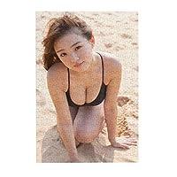 ジグソーパズル300ピース篠崎愛 手作りのアートワーク サイズ38.3×26cm