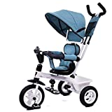 YLZT Nuevo Cochecito de Bicicleta para niños Triciclo 2-5 años de Edad Modos de conversión guía integrada,Azul