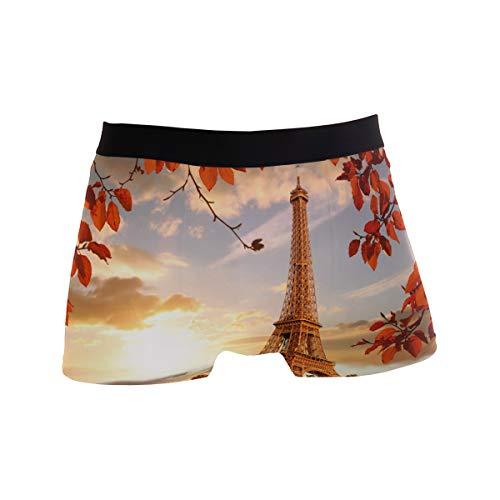 Alarge Herren-Boxershorts, Paris Eiffelturm, Herbstblätter, kurze Unterwäsche, weiche Stretch-Unterhose für Herren, Jungen, S-XL Gr. X-Large, multi