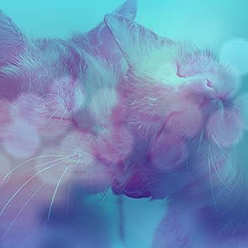 純粋-かわいい猫