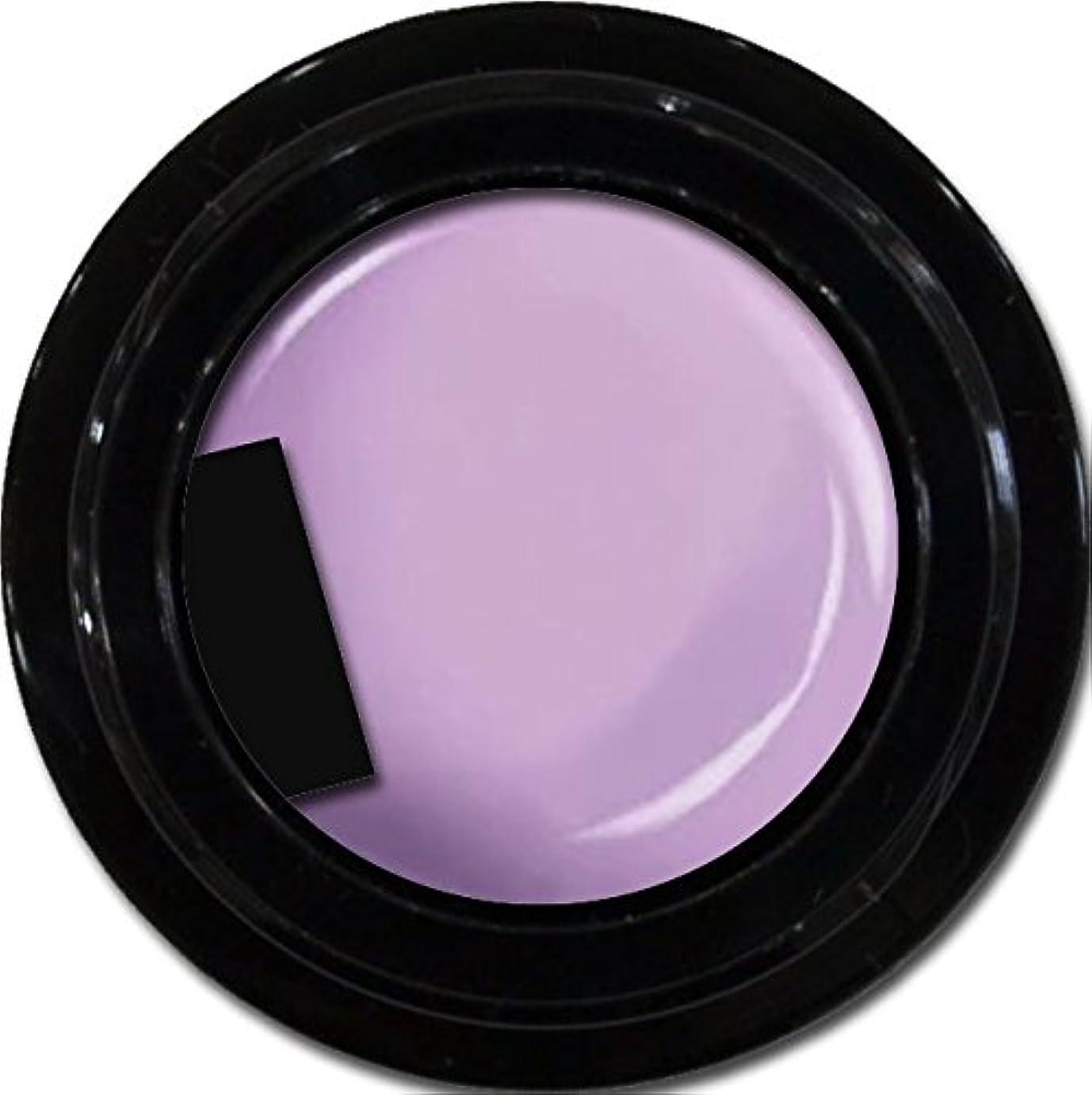 ミッション干渉するロゴカラージェル enchant color gel M508 BlueberryCheesecake 3g/ マットカラージェル M508 ブルーベリーチーズケーキ 3グラム