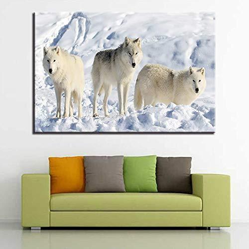 Puzzle 1000 Piezas Lobo ártico norteamericano Art Imagen de Lobo Blanco Puzzle 1000 Piezas Juego de Habilidad para Toda la Familia, Colorido Juego de ubicación.50x75cm(20x30inch)