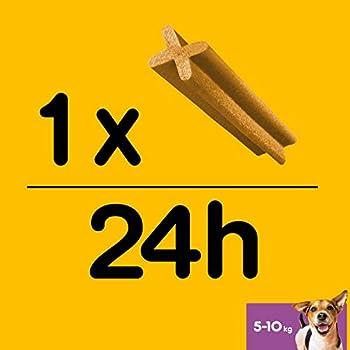 Pedigree Dentastix - Friandises pour petit chien, 56 bâtonnets à mâcher pour l'hygiène bucco-dentaire (8 sachets de 7 Sticks)