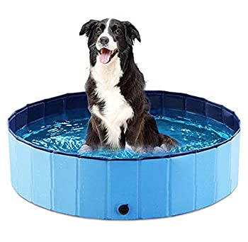 Jasonwell Foldable Dog Pet Bath Pool Collapsible Dog Pet Pool Bathing Tub Kiddie Pool for Dogs Cats and Kids  32inch.D x 8inch.H Blue