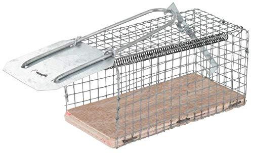 Nasse à rats - 1e socle bois