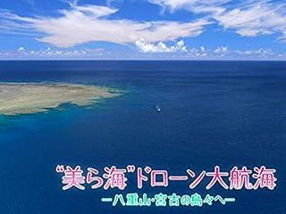 """""""美ら海""""ドローン大航海(NHKオンデマンド)"""