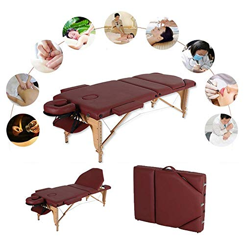 Mesa de Cama de Masaje portátil de salón Belleza Plegable de 3 Secciones;Sofá Reiki Therapy Treatment Healing Salon - Soporte de Pecho de Metal/Bolsa de Transporte