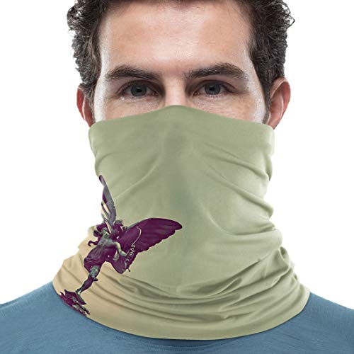 Outdoor Neck Gaiter Face Shields Neck Guard Face Protective Safety Shields for Outdoor Cycling Face Protection, Block Up Wind&Dust&Harmful Rays, Cupid Sculpture