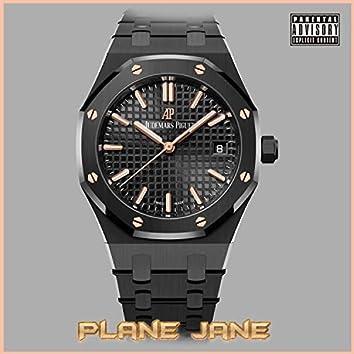 Plane Jane 2