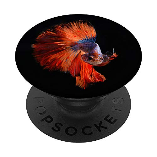 Red Siamese Betta Fighting Fish Portrait Novelty Art Print PopSockets PopGrip: Swappable Grip for Phones & Tablets