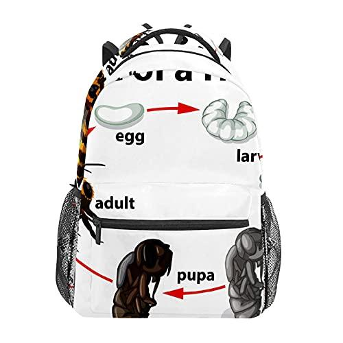 Mochila escolar ciclo de vida de una abeja miel estudiante viaje senderismo camping mochila casual libro bolsas hombro bolsa