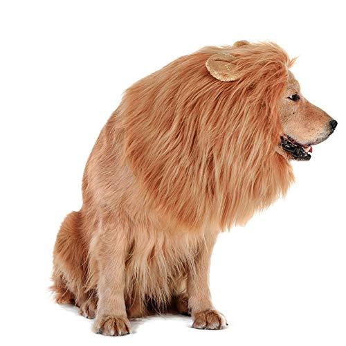 Lovelion Dog Hats - Interesting Dog Costumes...