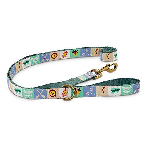 Petco Brand - Good2Go Pawsome Adventures Dog Leash, 6 ft.