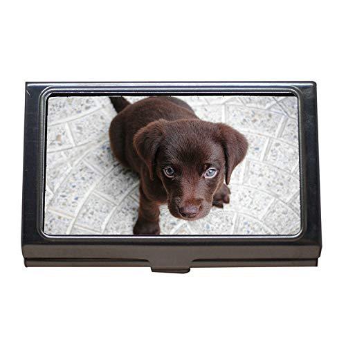 Titular de la tarjeta de visita, Puppy Labrador Purebred Retriever Dog Pet Brown, Estuche para tarjetas de visita de acero inoxidable