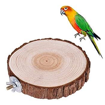 VILLCASE Trampoline en bois rond Motif oiseau et perche Support étagère Jouet Petits animaux Cage de hamster Supports (8-12 cm)