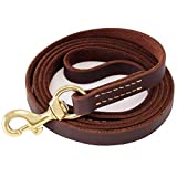 """Fairwin Leather Dog Leash 6 Foot - Best Dog Training Leash Heavy Duty for Large Medium Small Dogs ( 5/8"""", Brown)"""
