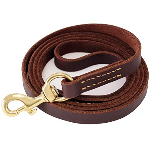 """Fairwin Leather Dog Leash 6 Foot - Best Dog Training Leash Heavy Duty for Large Medium Small Dogs (5/8"""", Brown)"""