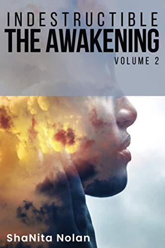INDESTRUCTIBLE Volume 2- The Awakening: Journey From PAIN TO PROMISE