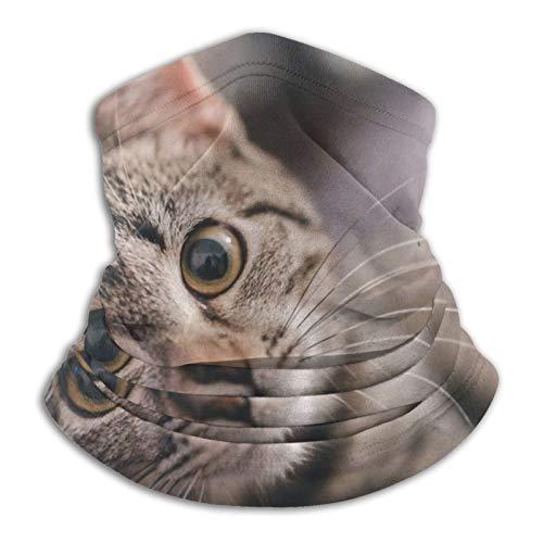 Towel&bag Lindo gato anime multifuncional microfibra calentador de cuello bufanda negro