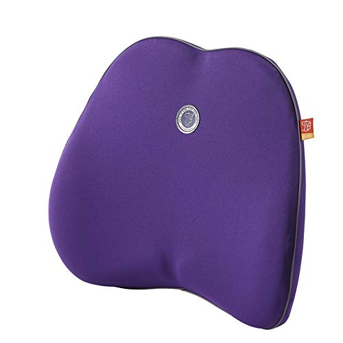 KDOAE Lumbar Pillows Office Chair Back Pillow Can Improve Posture Washable Cover Memory Foam Plastic Surgery Pad For Chair Back Rest (Color : Purple)