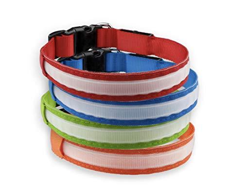 LED Hundehalsband Leuchtend mit USB aufladbar Einstellbar 100% Wasserdicht in verschiedenen Größen und Farben