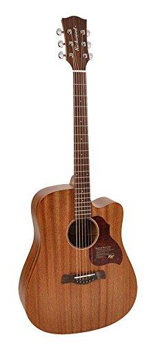 Richwood G-250-CE Gitarre
