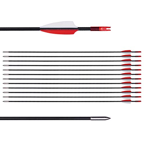 CUPID 31' Training Arrows-Archery Practice Target Arrows with Durable Shaft Blunt Tip for Kids Youth or Beginners on Recurve Bow Long Bow (12pcs Arrows, Red)