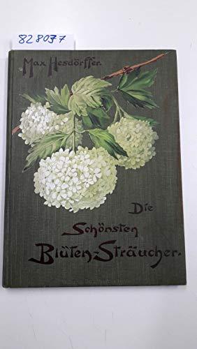 Die schönsten Blüten-Sträucher
