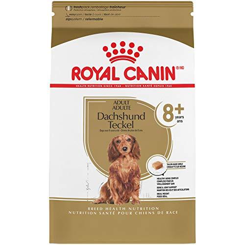 Royal Canin Dachshund Adult 8+ Breed Specific Dry Dog Food, 3 lb. bag