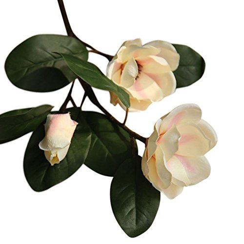 Terby Kunstblumen, Künstliche Seide gefälschte Blumen Magnolia mit Leaf Hochzeit Blumen Wedding Bouquet Hause Deko für Geburtstag Party Dekoration (Beige)