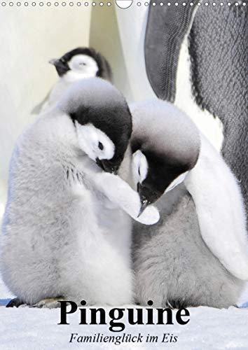 Pinguine. Familienglück im Eis (Wandkalender 2021 DIN A3 hoch)