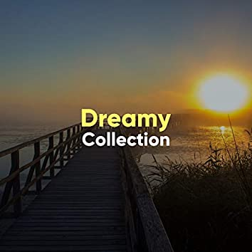 #Dreamy Collection