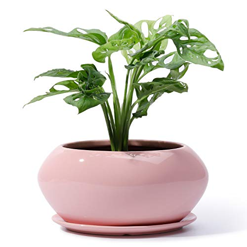 POTEY Ceramic Plant Flower Pots - 6.9 Inch Planter Bonsai Medium Container Large Space - Drain Hole with Saucer, Pink