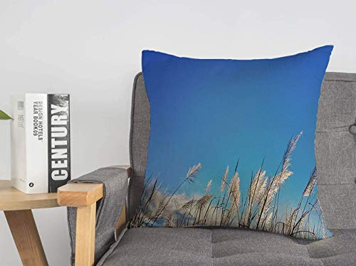 LREFON Doble Cojines Fundas 18' Agradable Color Suburbano Relax Cielo Azul Hermoso Paisaje De Hierba Blanca Parques Naturales DIS Funda Almohada Suave