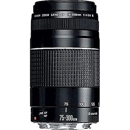 Canon EF 75-300mm f/4.0-5.6 III Objectif [Ancien Modèle]
