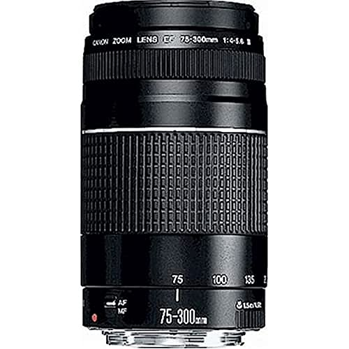 Canon telephoto lens EF 75-300mm F4.0-5.6 III for EOS (58mm filter thread,...