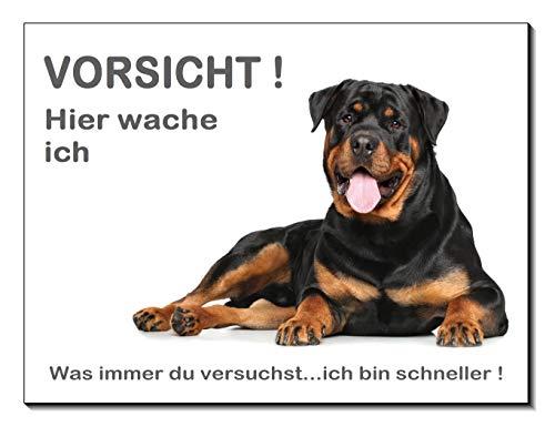 Rottweiler-Hier wache ich-Hundeschild-Schild-3 Größen-Aluminium Verbund-Hund-Tierschild-Warnschild-Hinweisschild (1450-83 -20 x 15 cm mit Klebepads)