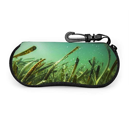 WCHAO Grüne Seegras-Sonnenbrille mit Verschlussschnalle Softbag Ultraleichtes Tauchgewebe Reißverschluss-Brillenetui