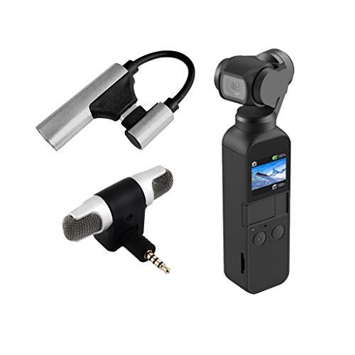L9WEI - Microfono radio per DJI OSMO Pocket, registrazione microfono di tipo C, adattatore audio esterno di alta qualità, microfoni regolabili, accessori per droni (argento, 1 set)