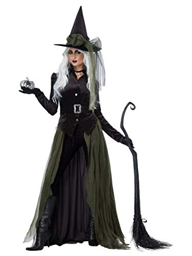 California Costumes Women's Gothic Witch-Adult Costume, Black/Green,...