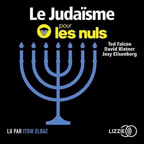 Le judaïsme pour les Nuls cover art