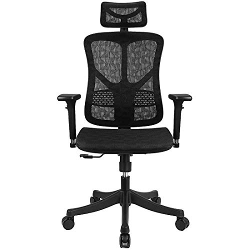 Argomax Ergonomic Mesh Office Chair High Back with Adjustable Headrest/Tilt Back/Tension/Lumbar Support/3D Armrest/Seat High End Argomax Computer Desk Chair 360 Swivel Self (Classic) (Black)