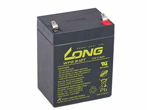 Kung Long WP2.9-12T - Batería de plomo (12 V, 2,9 Ah, AGM, sin mantenimiento)