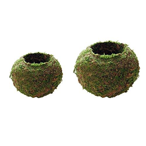 perfk 2pcs Bola de Musgo Creativa Maceta Maceta Bonsai Titular de La Planta Jardín de Su Casa