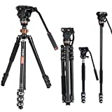 Best Compact Dslr Cameras - Cayer AF2451 Professional Video Camera Tripod 67 inches Review